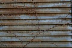 Заржаветая предпосылка двери металла текстура металла старая заржаветая поверхность металла старая Стоковое Изображение RF