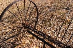 Заржаветая старая грабл сена Стоковое Изображение