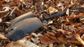 Заржаветый лопаткоулавливатель 2 Стоковая Фотография
