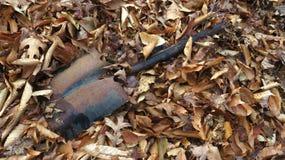Заржаветый лопаткоулавливатель 3 Стоковая Фотография RF