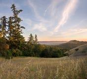 заросший лесом заход солнца лета горы Стоковые Фото