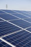засадите силу солнечную Стоковое Изображение RF