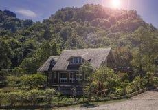 Засаженный дом Стоковое фото RF