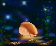 засаживает мир seashell подводный Стоковые Фотографии RF