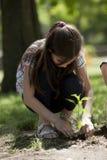 Засаживать детей стоковое изображение rf