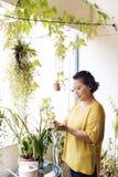Засаживать концепцию деятельности при домохозяйки роста плантации Стоковые Фото