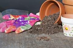 Засаживать семена Стоковое Изображение
