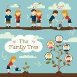 Засаживать фамильное дерев дерево Стоковое Фото