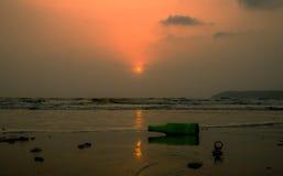 Засаривать на пляже Стоковые Изображения RF
