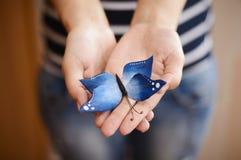 Засахарите голубую бабочку в руках женщин Стоковое фото RF