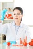 Засадите исследование биологии для генетической еды gmo изменения Стоковая Фотография RF