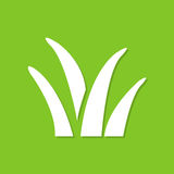 Засевайте значок травой с тенью в плоском дизайне на зеленой предпосылке Стоковая Фотография