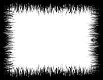 Засевайте рамка травой Стоковая Фотография