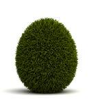 Засеванное травой яичко Стоковые Изображения RF