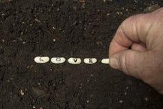 Засевать семена влюбленности Стоковое Фото