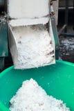 Заскрежетанная продажа кокоса на рынке стоковое изображение