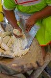 Заскрежетанная юкка будучи подготавливанным для хлеба в деревне Siona в запасе живой природы Cuyabeno, эквадора стоковое изображение rf