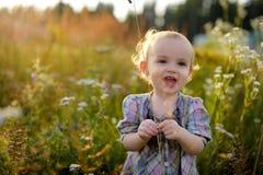 засорители младенца маленькие Стоковые Изображения RF