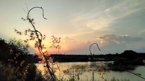 Засорители на заходе солнца стоковое изображение