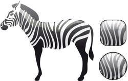 застегивает глянцеватую зебру вектора Стоковые Фотографии RF