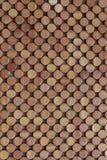 застегивает деревянной Стоковая Фотография RF