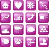 застегивает уклад жизни пурпуровым Стоковое фото RF