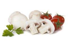 застегните томат грибов вишни белой Стоковые Изображения