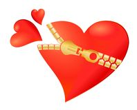 застежка -молния загерметизированная сердцем Стоковое Изображение RF