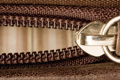 Застежка -молния Стоковая Фотография RF