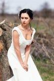 Застенчивая невеста около пня Стоковое фото RF