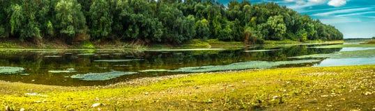 Застойное отражение воды Стоковые Фотографии RF