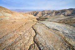 Засуха в пустыне Стоковые Изображения RF