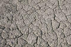 Засуха, засушливые почвы Стоковое Фото