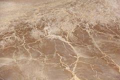 Засуха окружающей среды Выставки соли через землю Неурожайный br Стоковые Фото