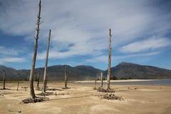 Засуха принимая владение Theewaterskloof стоковые изображения