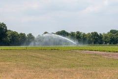 Засуха принуждает фермеров оросить сухую пахотную землю с Стоковое Фото