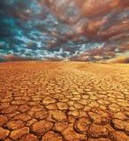 засуха Стоковое Изображение