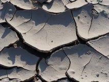 засуха Стоковое Фото