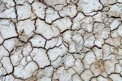 Засуха 1 Стоковая Фотография