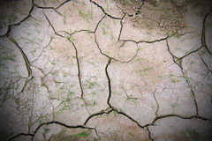 засушливо сухая земля Стоковое фото RF