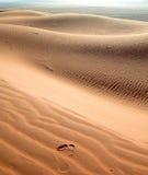 засушливый песок шага дюн Стоковые Изображения