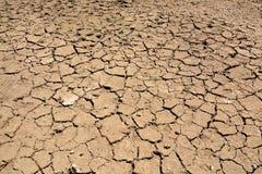засушливая треснутая почва Стоковая Фотография RF