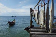 Засыхание рыб стоковое изображение rf
