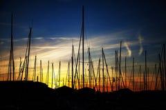 затаите заход солнца Стоковые Изображения