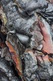 Затвердетая лава Гаваи Стоковое Фото