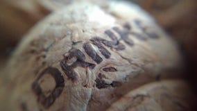 Затворы вина Стоковое Изображение RF