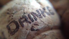 Затворы вина Стоковое фото RF