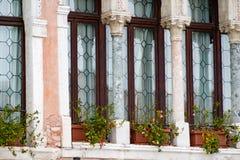Затейливые искусство и скульптуры украшают исторические здания в Венеции, Италии стоковая фотография rf