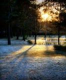 затеняет солнечний свет Стоковая Фотография