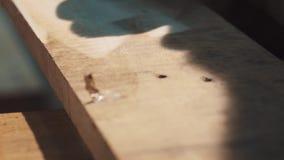 Затирание машины угловой машины на деревянном баре в мастерской акции видеоматериалы